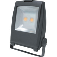 LED Lyskaster 2x50W