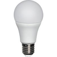 LED P�re 10W E27 Dimm